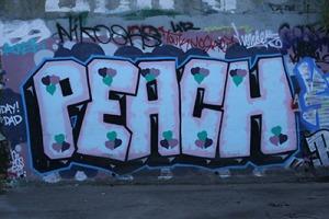 Graffiti on Stony Creek