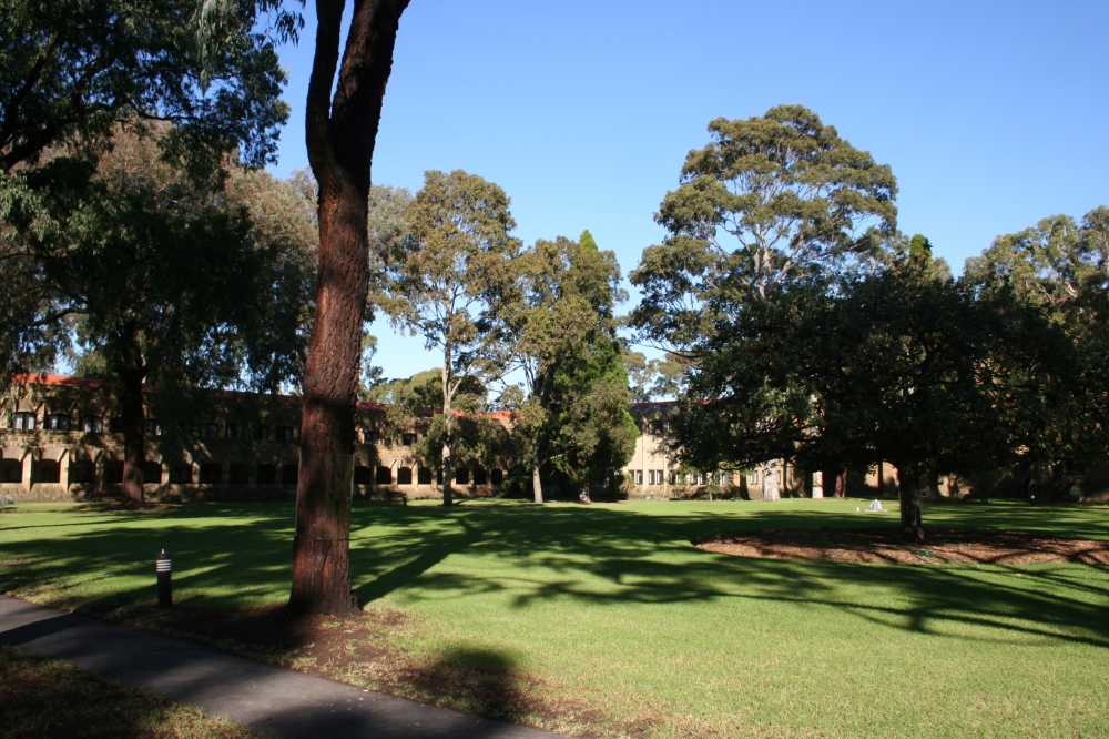 The grassy quadrangle.