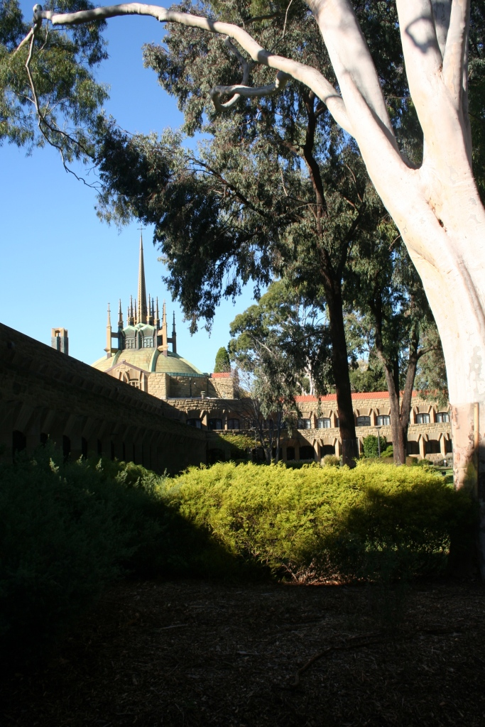 View from the grassy quadrangle of the college.