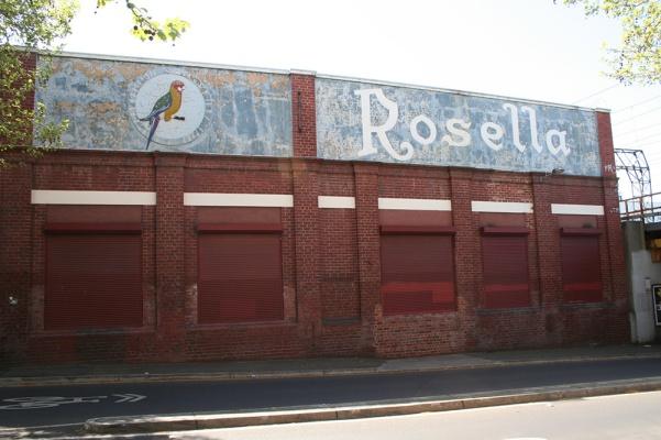 Rosella_1