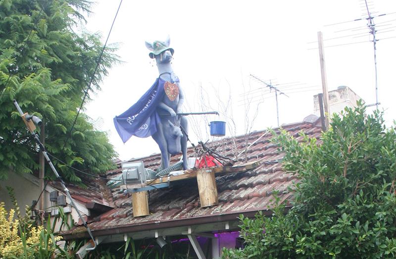 kangaroo-roof2
